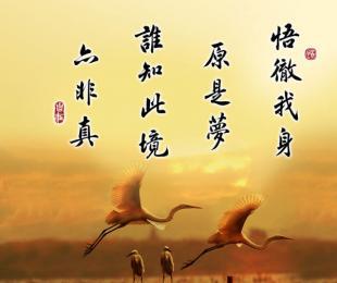 扶阳理路(三)